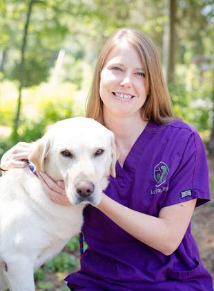 veterinarian, northside richmond